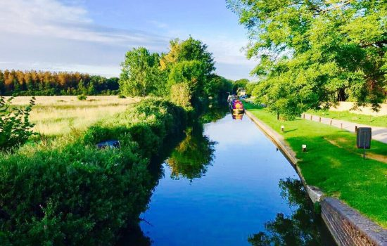 canal and canal boast thrupp summer green trees
