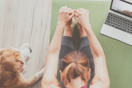 woman in forward fold on mat with mac and dog