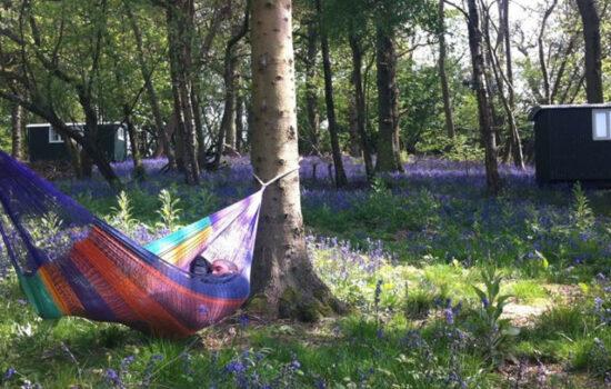 person in hammock bluebells glamping eco yoga retreat