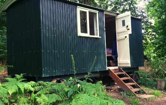 shepherds hut with door open in woods glamping eco yoga retreat