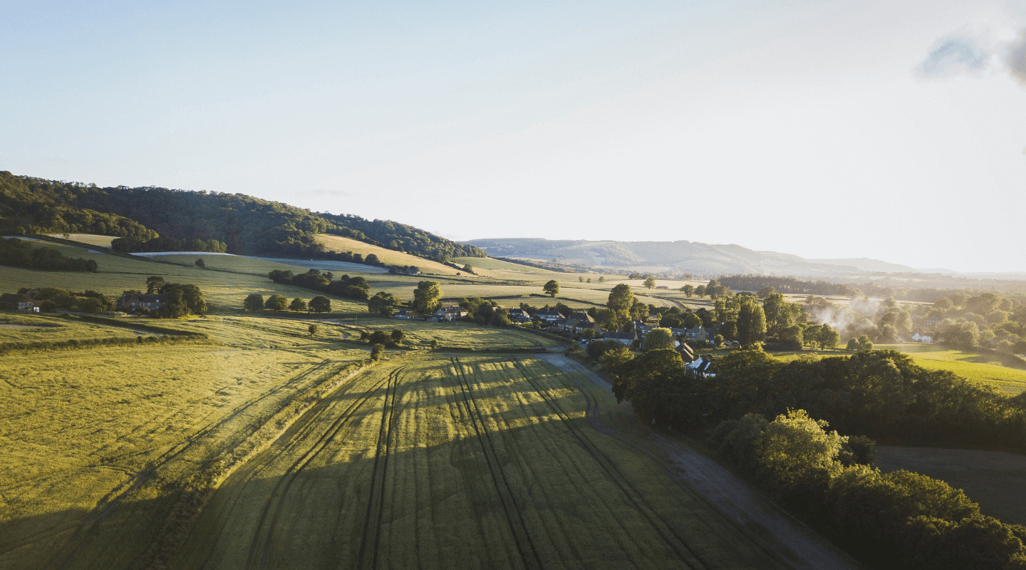 view of sussex downs